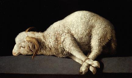 lamb-sacrificial